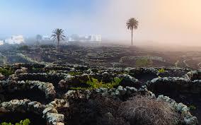 El futuro de nuestras islas está ligado al respeto a nuestro patrimonio natural